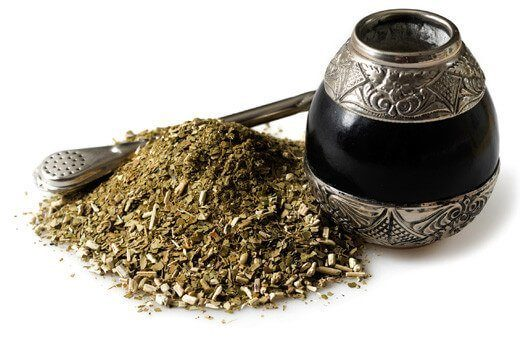 Yerba Mate - Plante des forets tropicales